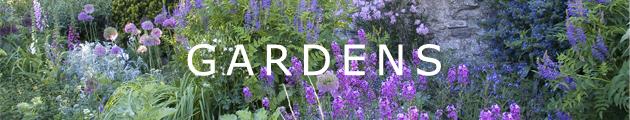 garden photographs