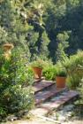 095 Paul Aciari, Provence