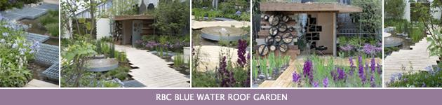2013 Chelsea Flower Show, RBC Blue Water Roof Garden, Professor Nigel Dunnett & The Landscape Agency