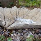 Birdbath Concrete
