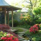 Exotic Gardens